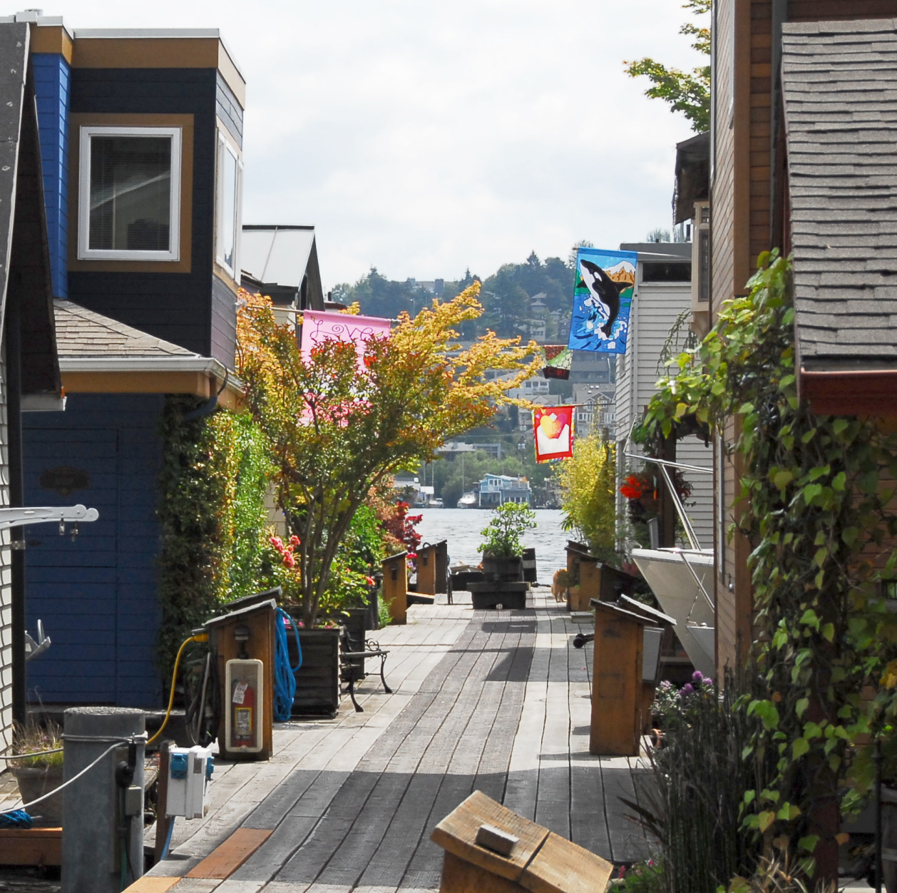 Seattle Houseboats – Seattle Houseboats in Lake Union and